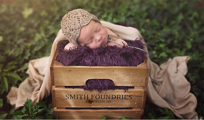 Newborn Photographers in Colorado